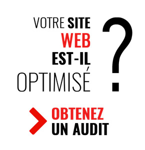 audit site Web